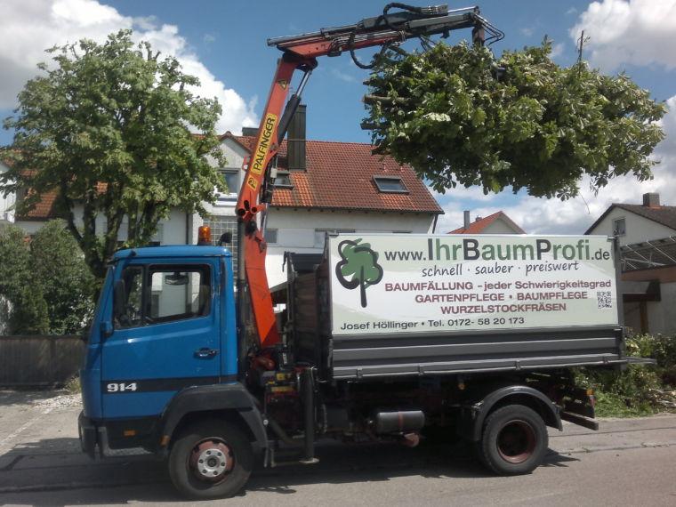 IhrBaumProfi Höllinger München - Baumfällung